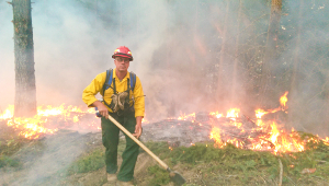 Firefighters return from west coast fires