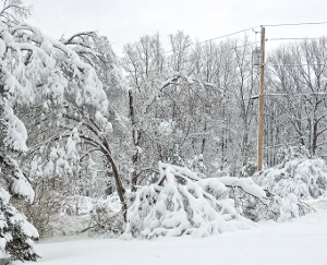 March storm dumps heavy snowfall