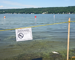 Red Jacket beach closes before holiday