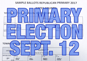 Without DA, primary election is on