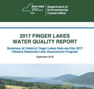 DEC releases 2017 water quality statistics