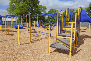 Lions install new Red Jacket playground