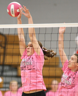 Dundee volleyball loses in three sets